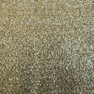 Y-it Entertainment Photo Booth Backdrop gold sequin www.YitEntertainment.com