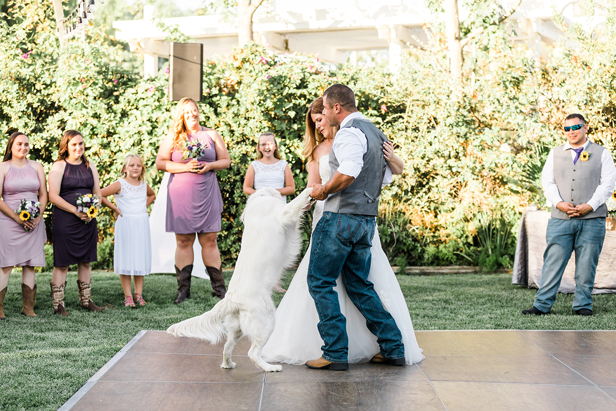 Jamie and Donnie Wedding First Dance